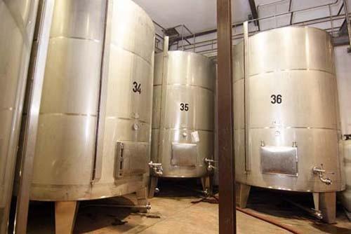Aruspide organic winery