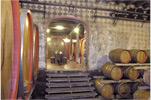 Pizzolato cellar