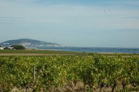 Belle Mare organic wine